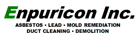 Enpuricon Logo